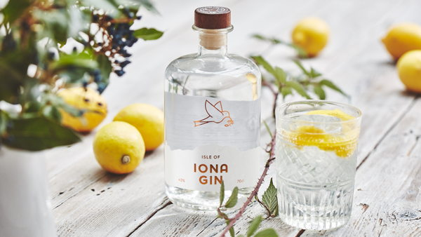 Iona Gin