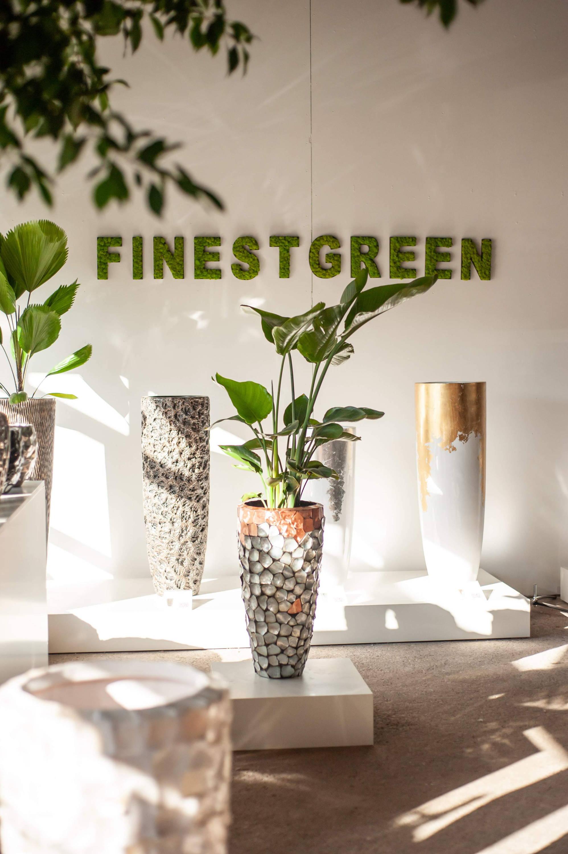 Finestgreen Store Hofheim