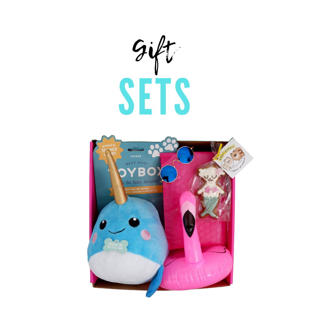Fun in the Sun Gift Set for Dogs | Puppy Care Package | Gift Spawt