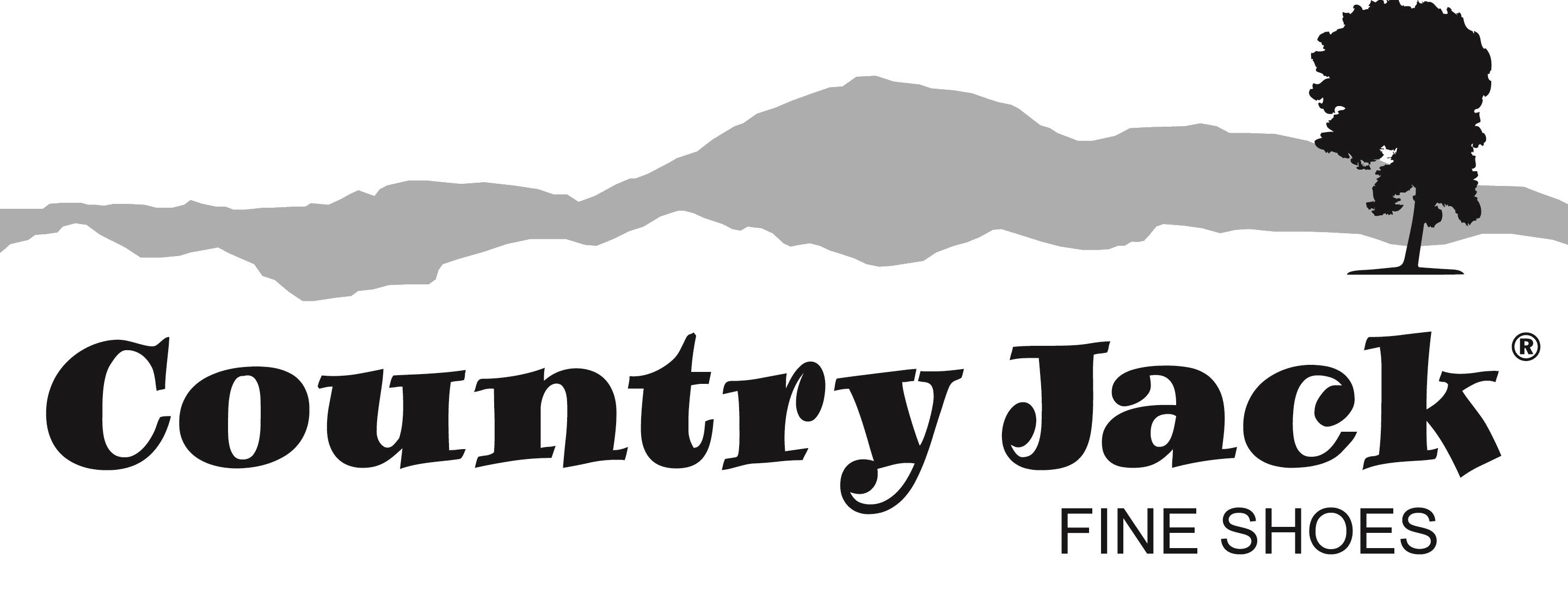 Adesso Logo