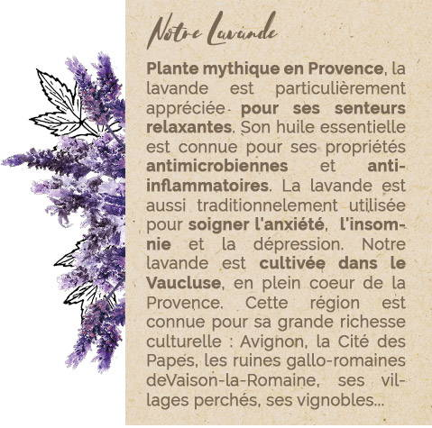 Notre Lavande - Mademoiselle Provence