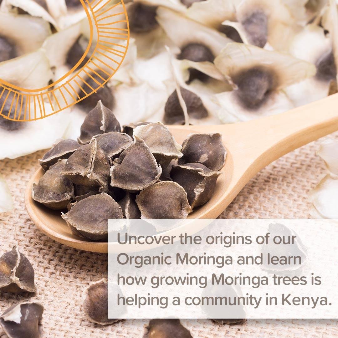 organic moringa oil sourcing story