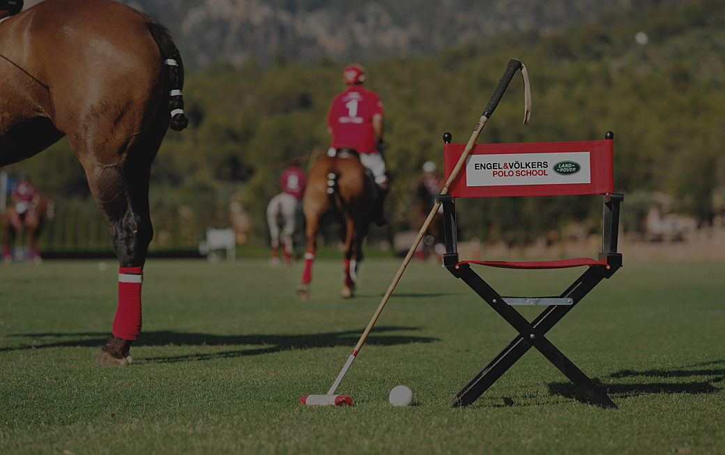 LAND ROVER POLO SCHOOL