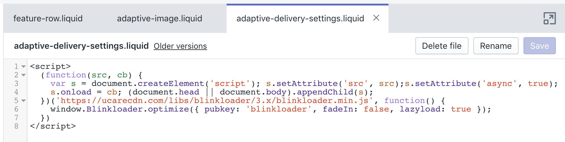 Adaptive Delivery Shopify integration