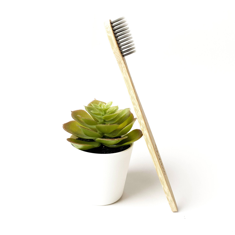 fournisseur grossiste brosse a dents bambou
