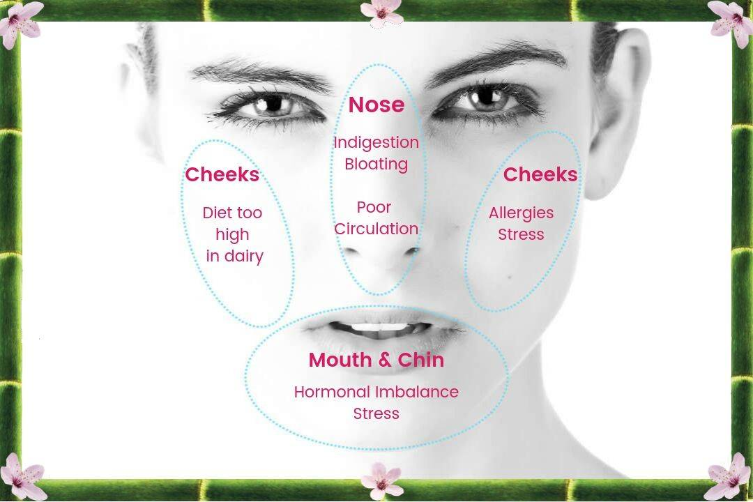 Face Mapping in Hot Springs, AR - Thai-Me Spa