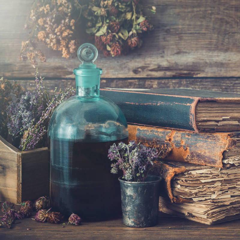 Kräuter- & Phytotherapie
