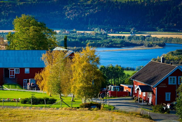 Norwegian Farm Experience