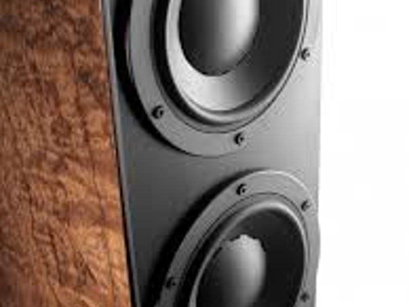Dynaudio Contour 3.4 LE  - Mocca Finish - Brand New In Box - Trade-In Opportunity