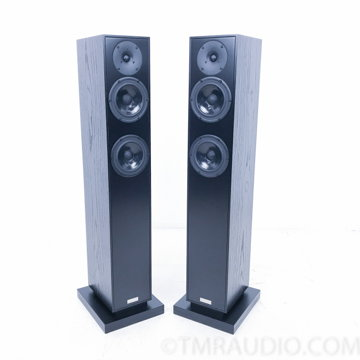 Rebel Three Floorstanding Speakers;