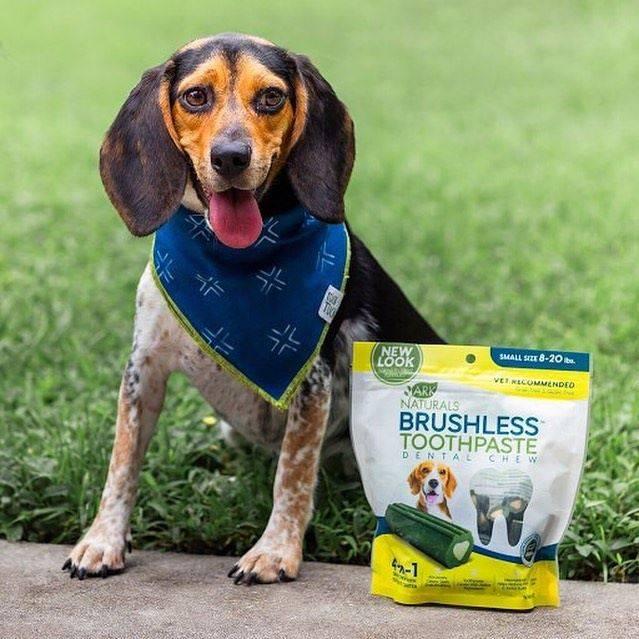 Ark Naturals Brushless Pet Dental Treats