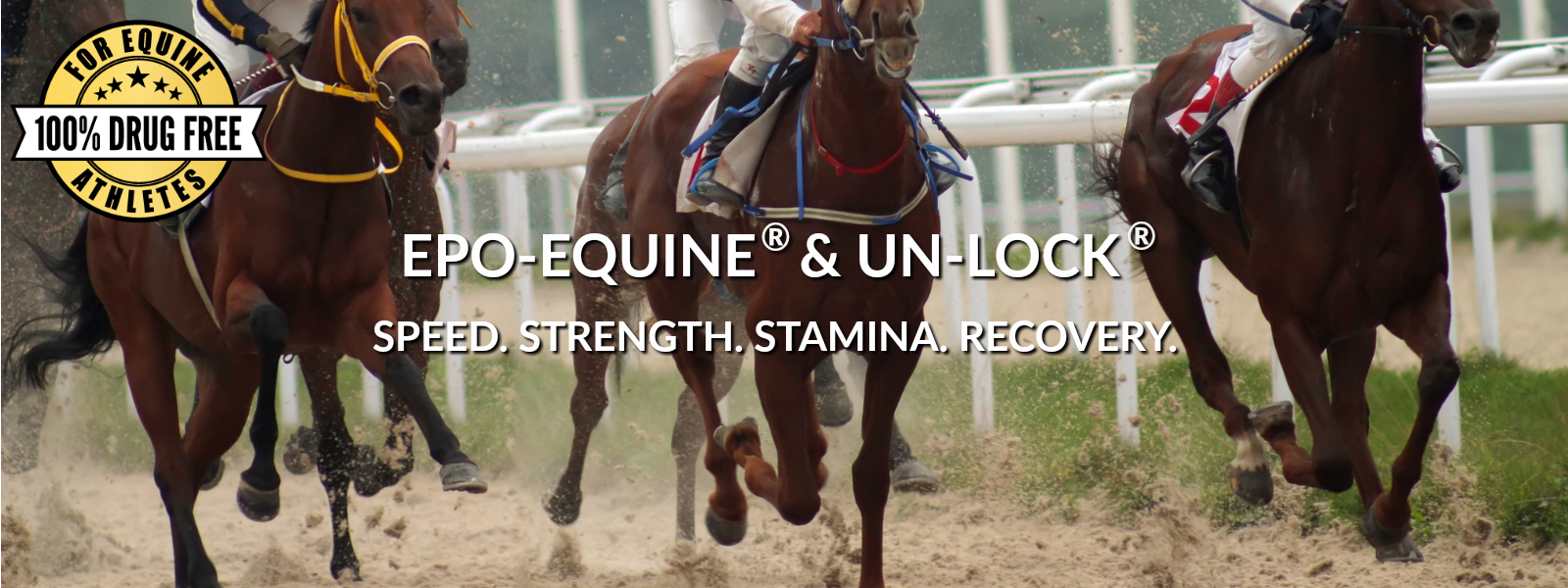 EPO-EQUINE and UN-LOCK horse supplements