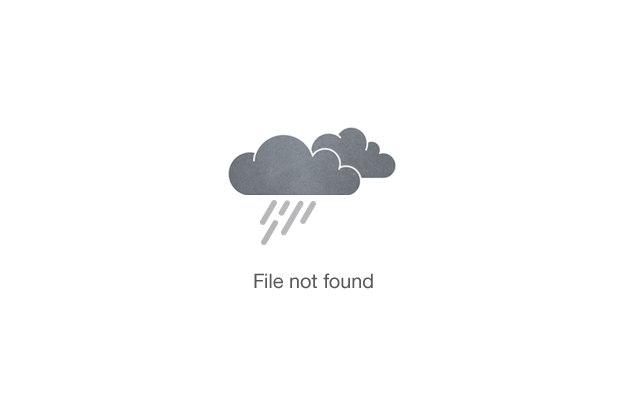 Gallivant Nairobi Town Bars