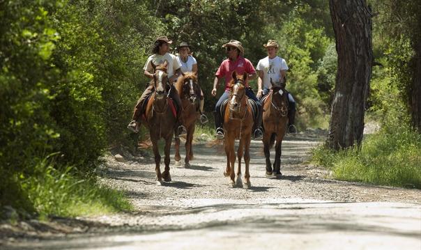 Прогулка на лошадях в Алании
