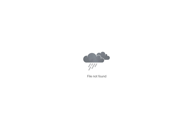 Les Cousins-du Stade-Rugby-Sponsorise-me-image-4