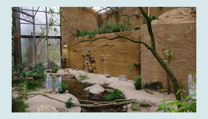 zoo krefeld vogelhaus