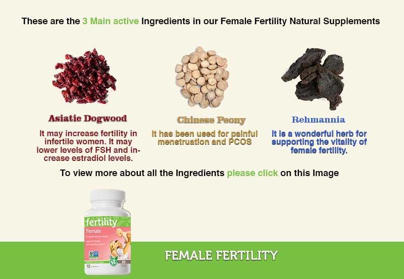 Female Fertility Ingredients