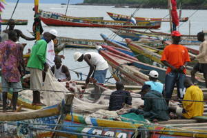 Visit a Local Fishing Village in Mombasa