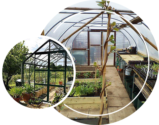 Greenhouse garden using polycarbonate panels