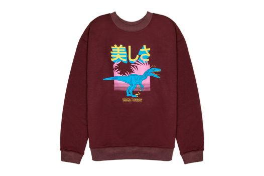 Свитшот динозавровый бордовый 美しさ
