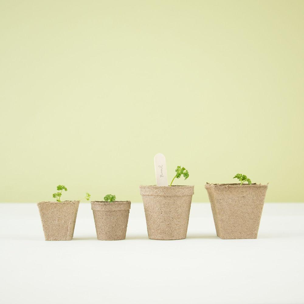 Thisispaper_Gardening-40a.jpg