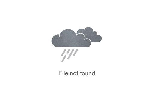 ATV Quad Bike driving in the Jungle (PASSENGER)
