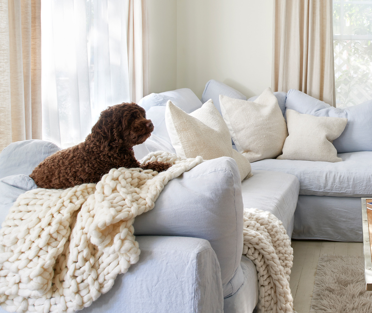 This Country Chic Living Room Is Everything Rachel: Rachel Ashwell Shabby Chic Couture Living Room Décor