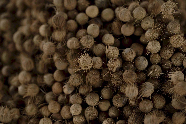 natural açaí seeds