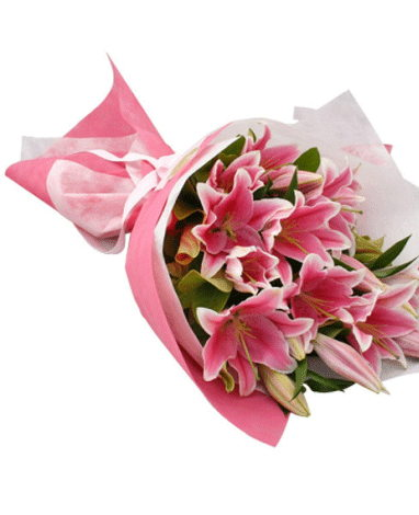 hf Special Pink Lily