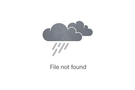 Safari World Safari Park & Marine Park Bangkok