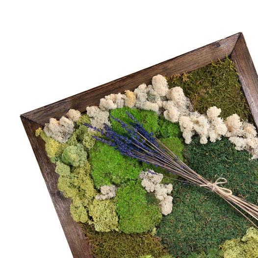 "Картина из растений ""VIA LAVANDOSA"""