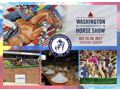 VIP Style'n At The Washington International Horse Show