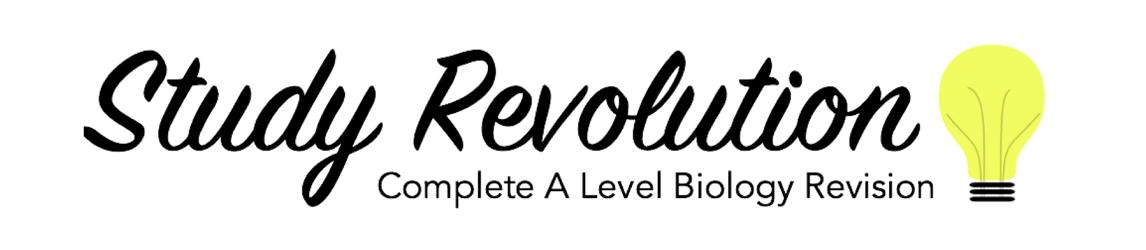 Study Revolution