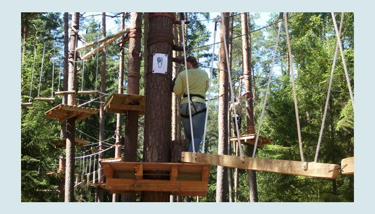 bester geburtstagde kletterwald weiherhof bäumde platform person klettern