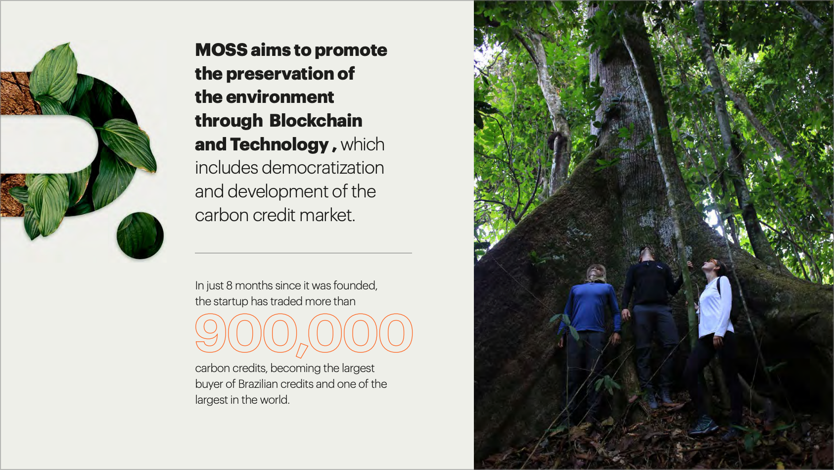 MOSS.Earth offsetting carbon