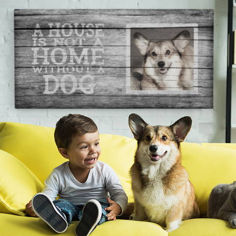 House is not a home without a home, canvas print corgi dog