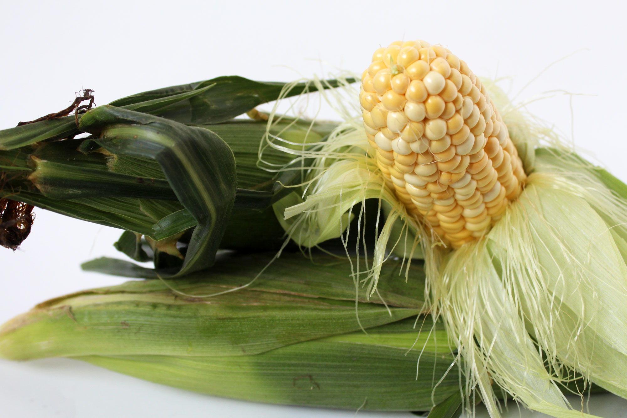 Corn - Souto Farms Fresh BC Fruit