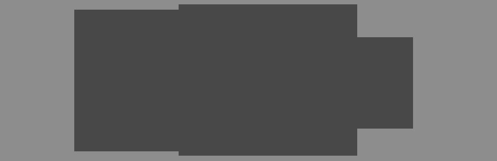 Maxi Magazin Logo