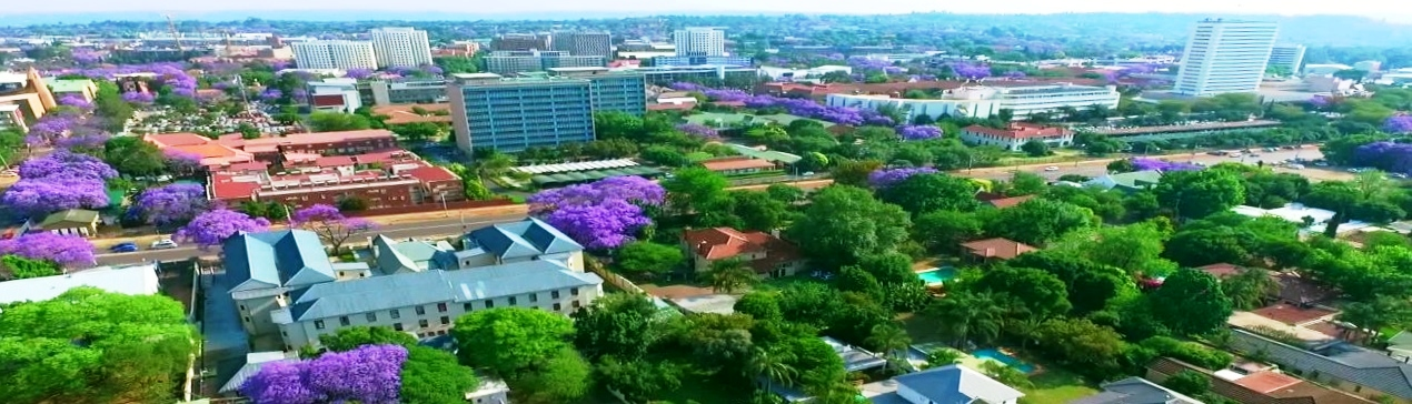 Real estate in 81 - 9.Jacarandas.jpg