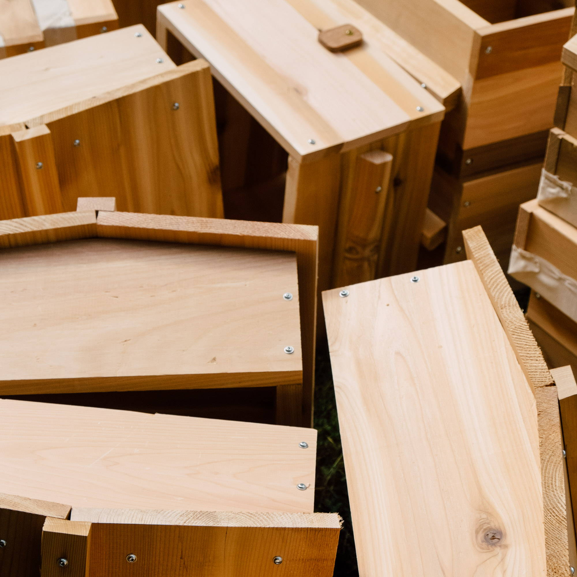 Where to Put Your Beehive -Bee Built