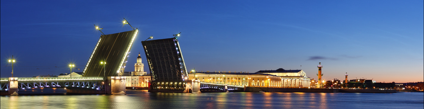 Обзорная экскурсия по Санкт- Петербургу