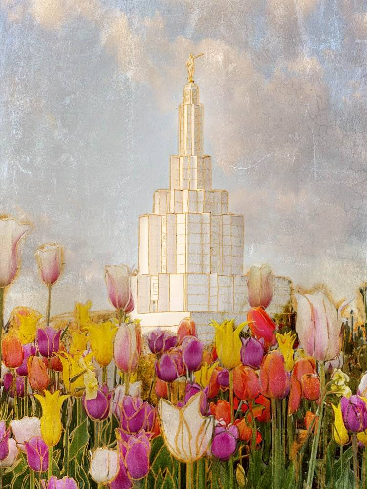 Painting of Idaho Falls Temple surrounded by colorful tulips.