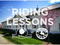 Riding or Driving Lessons at Blue Willow