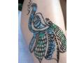 Henna and Beyond