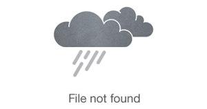 Rise Nutrition logo