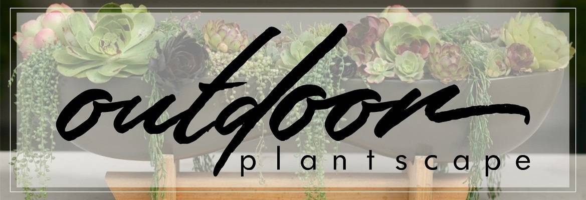 Outdoor Plantscaping