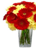 HF Gerbera & Carnation Bouquet
