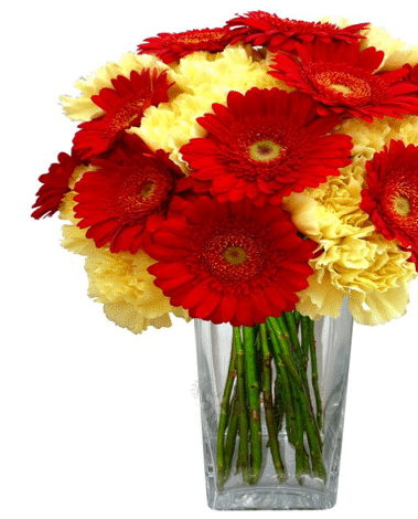 HF Gerbera & Carnation Bouquet