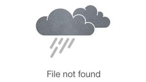 Media Center Dental - Nancy Lee, D.D.S