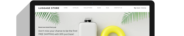 Drop Shipping Website Design